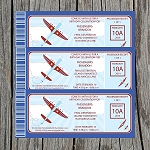 Airplane In Flight Custom Birthday Invitations