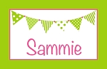 Green and Pink Banner Custom Placemat