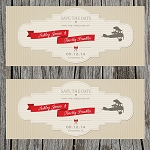 Vintage Plane Custom Save the Date