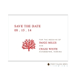 Bare Tree Save the Date by Stacy Claire Boyd