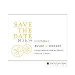 Oulined Sand Dolalrs Save the Date by Stacy Claire Boyd
